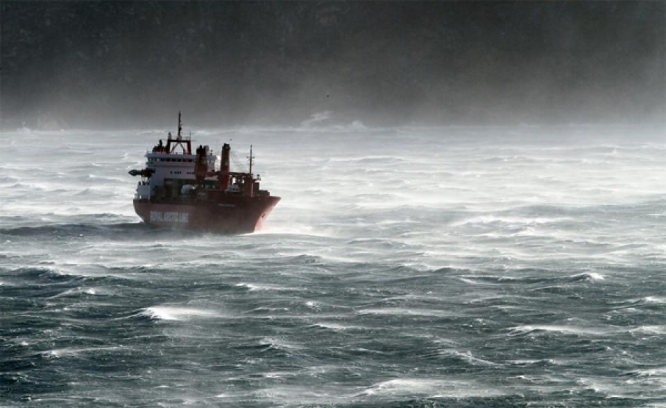 Arina Arctica in stormy weather